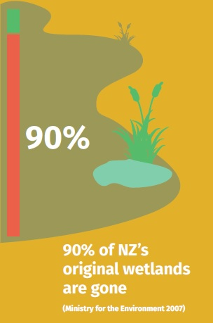 90% of wetlands gone
