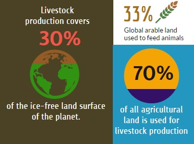 Livestock production inefficiencies