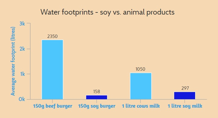 Water footprints - soy vs. animal products