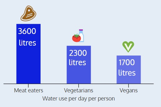 Diet water use per day
